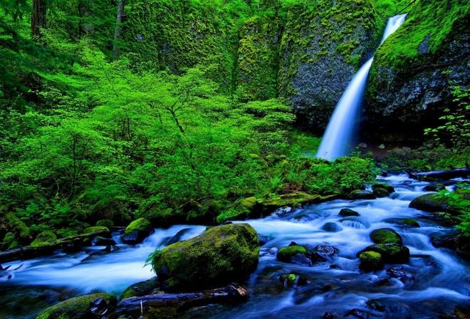 Обои природа водопад лес река на