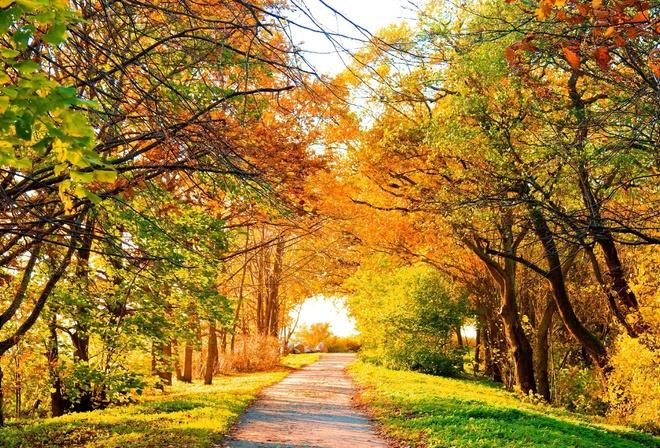 Картинки осени красивые - af1e