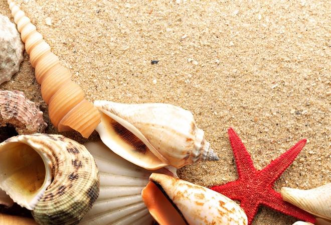 Картинки на раб стол лето море песок