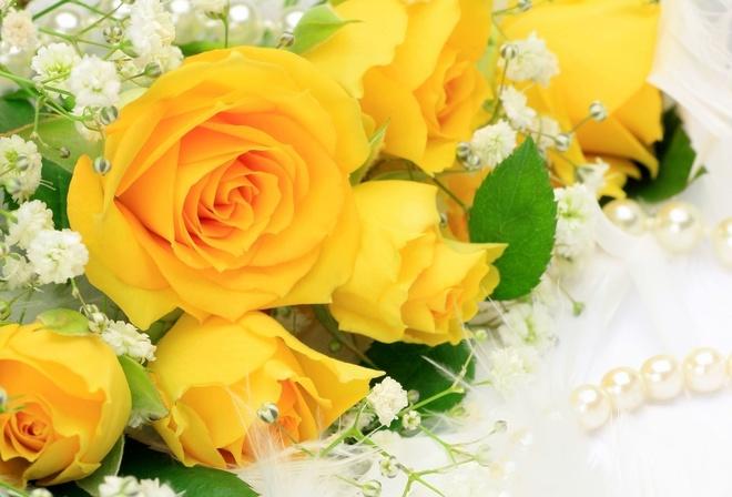 Красивые букет цветы цветок жёлтые