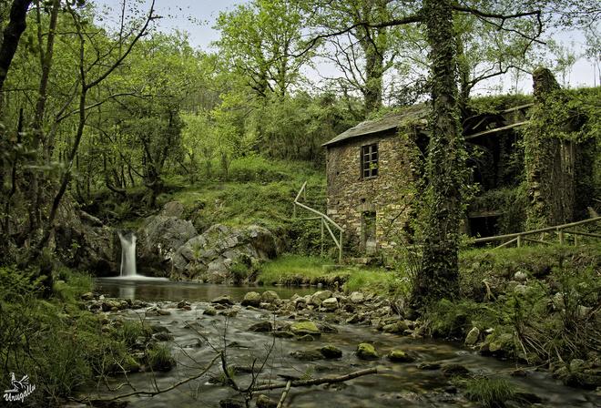 Spain деревья водопад на рабочий стол