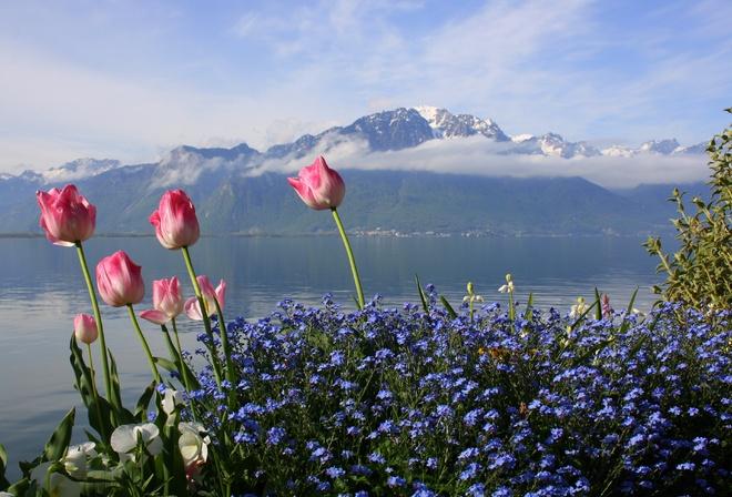 горы фотошоп картинки