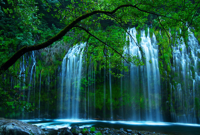 Обои природа лес река водопад камни