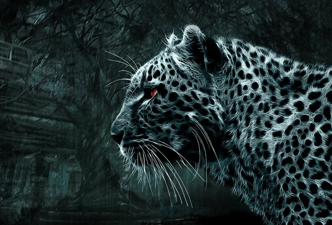 картинка леопард для раскрашивания