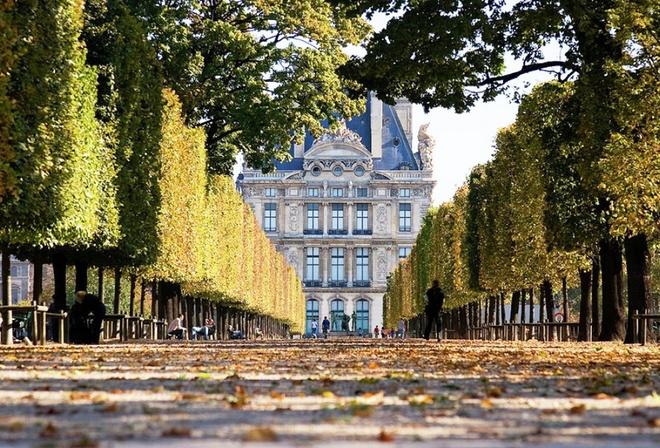 Картинки на рабочий стол париж осенью