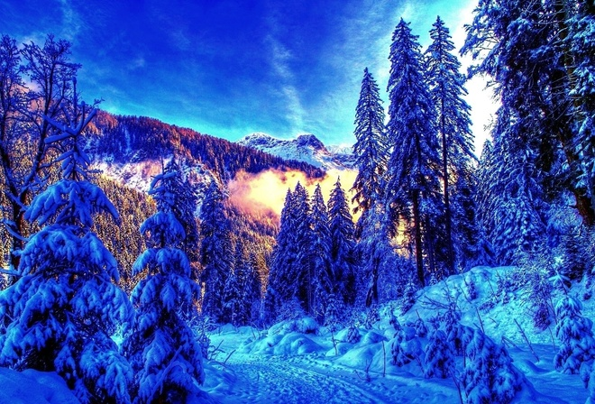 Классные картинки на рабочий стол зима