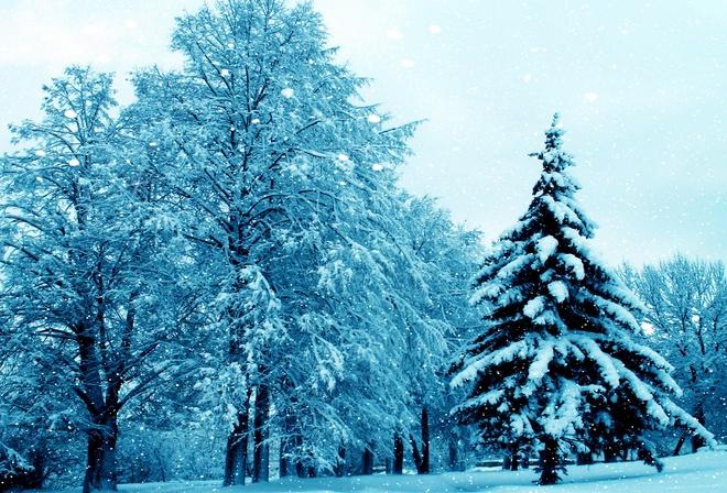 Классные картинки зимы на рабочий стол