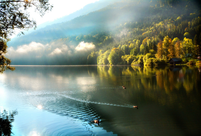 Картинки рыбалка на природе