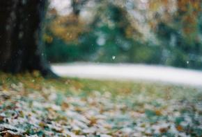 Первый снег снежинки поздняя осень