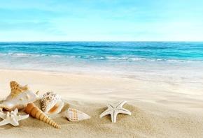 Картинки лето пляж отдых
