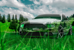 Tony Kokhan, Ford, Mustang, GT, Crystal, Nature, Car, Muscle, Green, Grass, American, Auto, el Tony Cars, Photoshop, Design, Art, Style, HD Wallpapers, ���� �����, �������, ����, �������, ��, ������, ���, ����, ����������, ������, ����������, ����, ����,