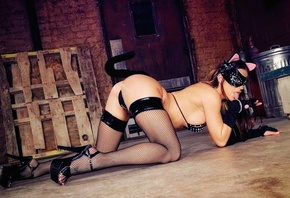 �������, ����, ���� ������, catwoman