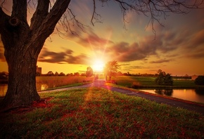 bridge, sunrise, trees, field, sky, sun