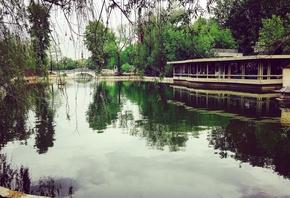 AristovArt, природа, landscape, nature, lake, water, озеро