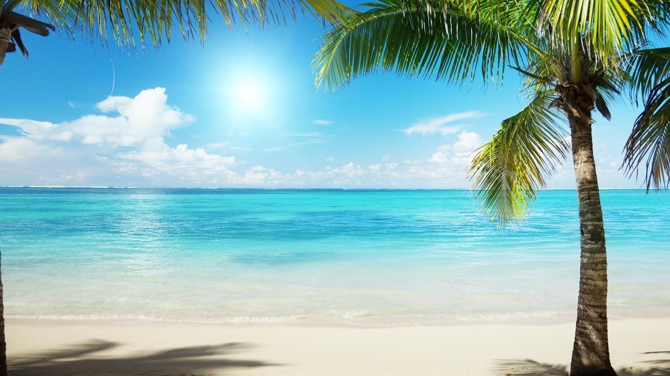 www Katrina Kaif bilde