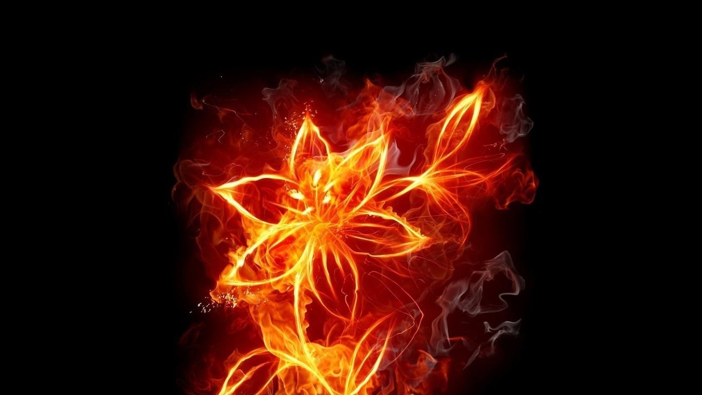 Огненные цветы картинки 2