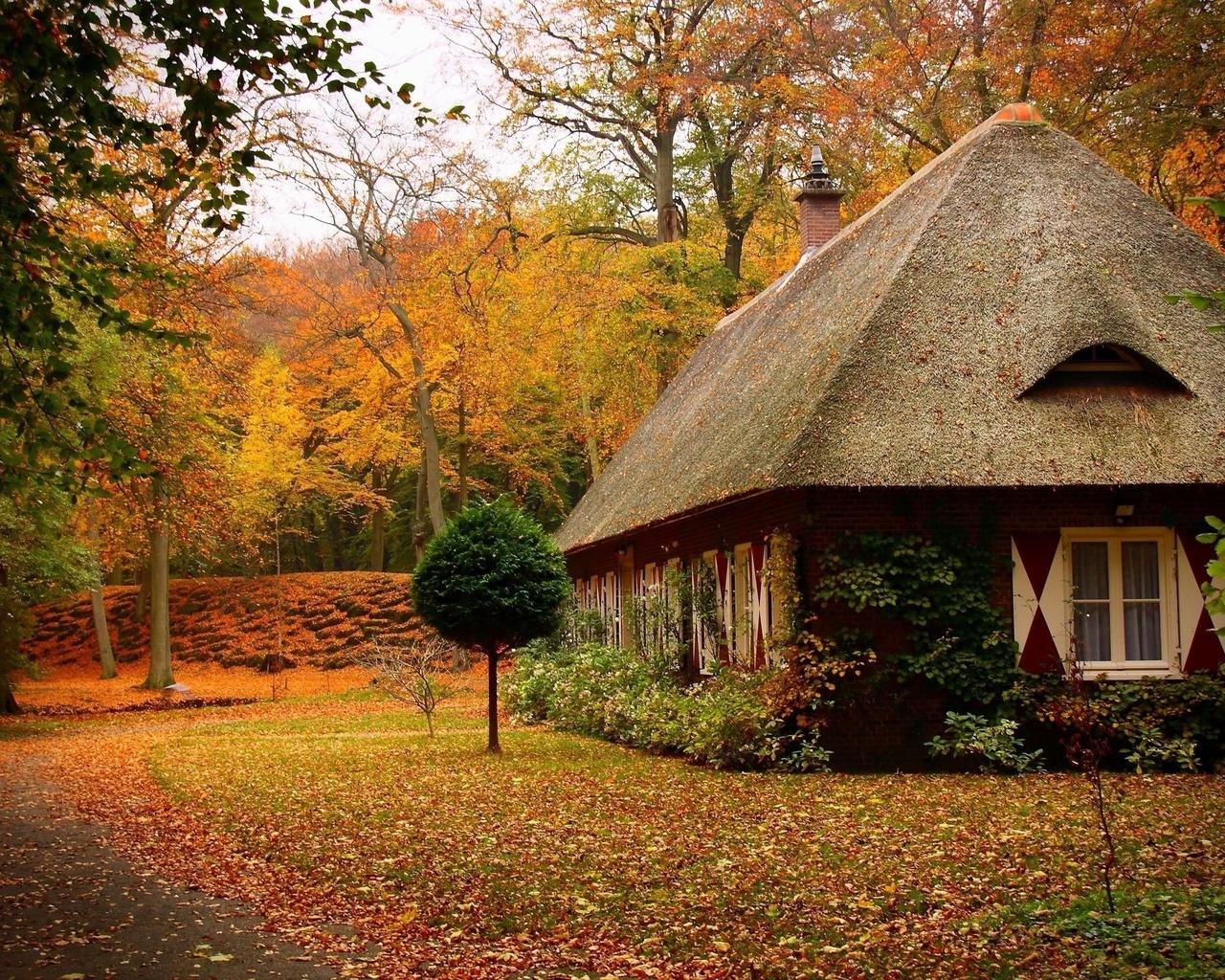 Аккуратность красивый осенний пейзаж