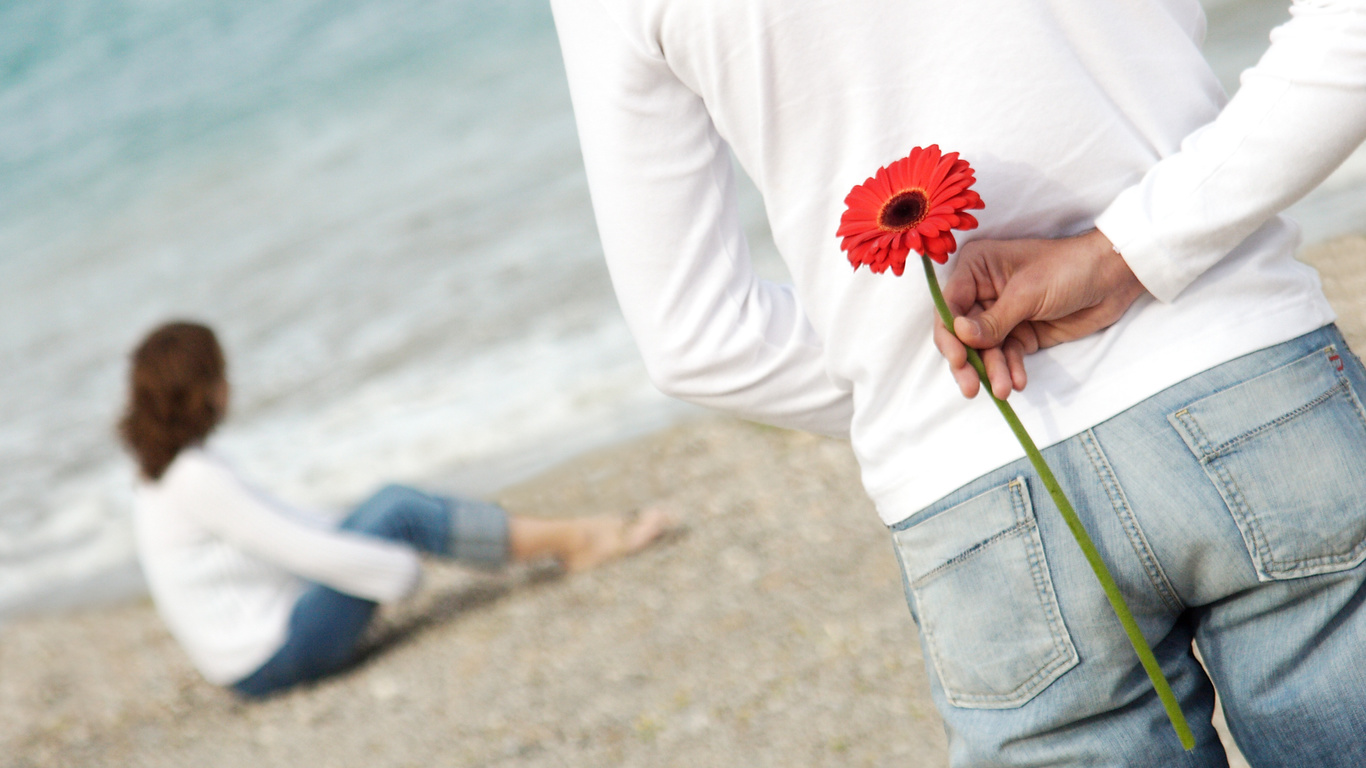 HD Couple wallpapers, beach, flower, romance, love, love, photo