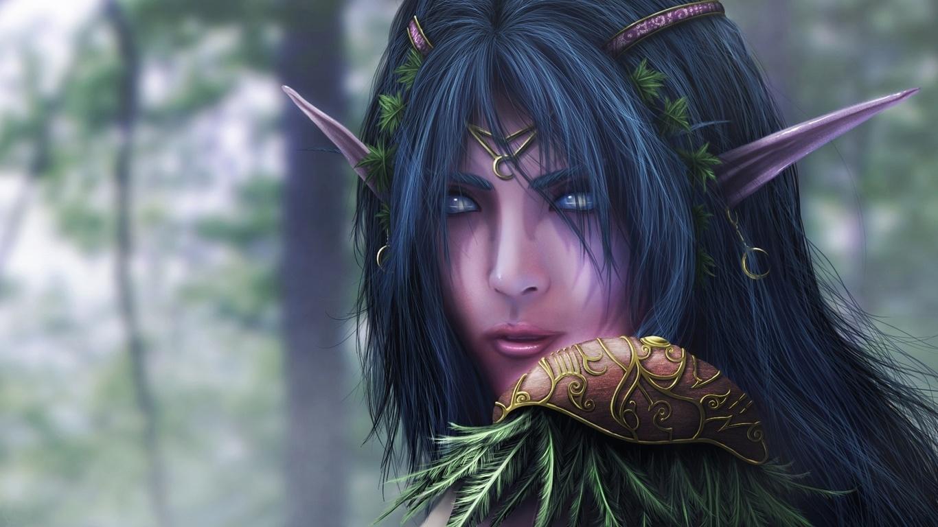 Nachtelfen, warcraft, fantasy, elfen, science fiction, fantasy, foto