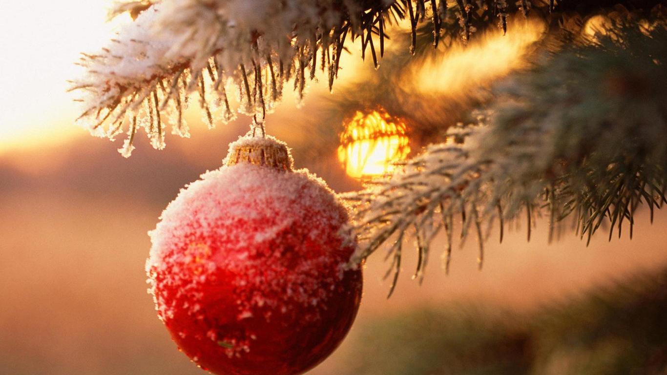Duvar kağıtları top, ağaç, dal, yeni yıl, yeni yıl, fotoğraf