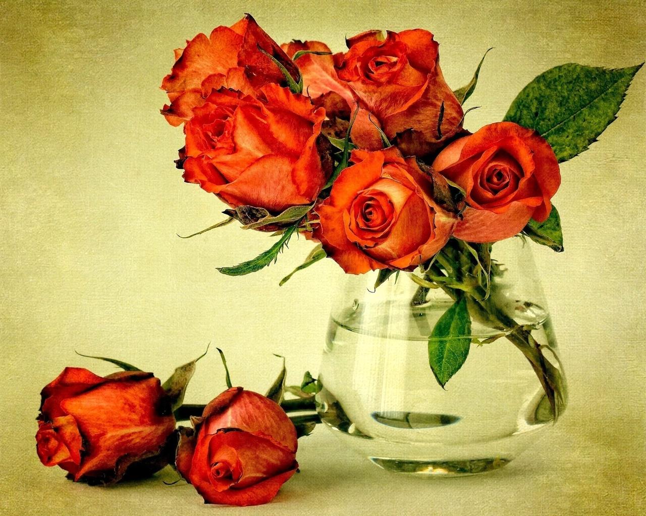 Ваза красные розы вода листья цветы
