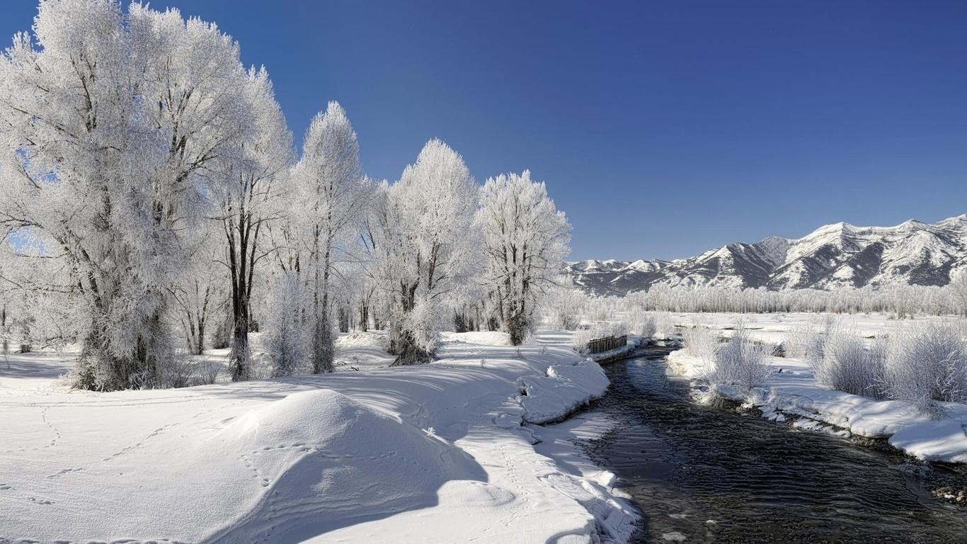 Картинки деревья зима природа река
