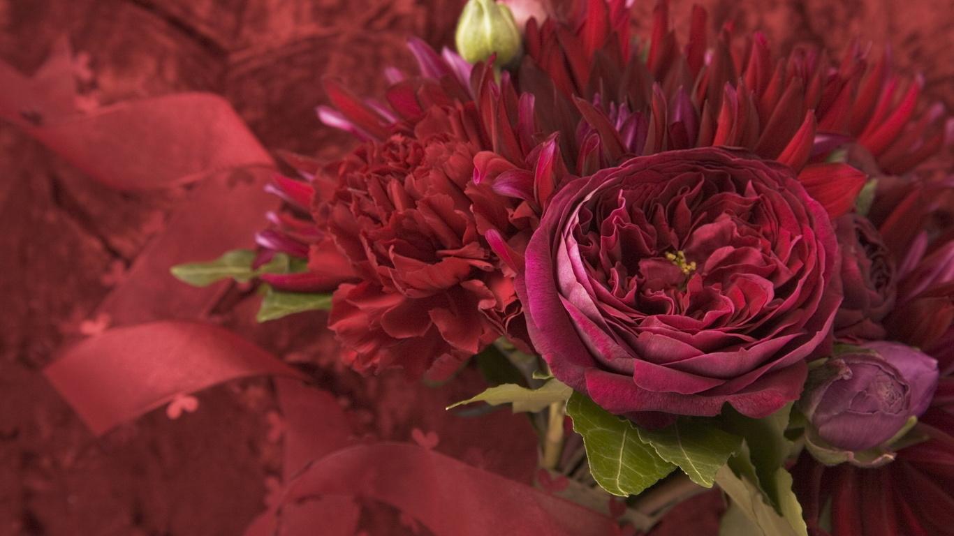 Цветы малиновый flowers категория цветы