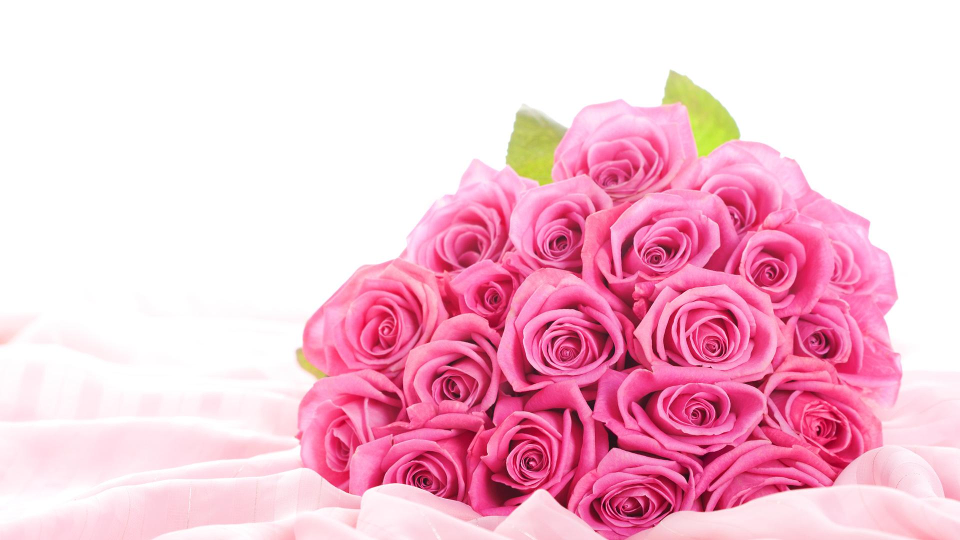 Стола обои розы цветы розовые розы