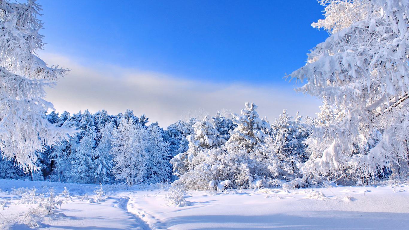 обои зима 1366x768