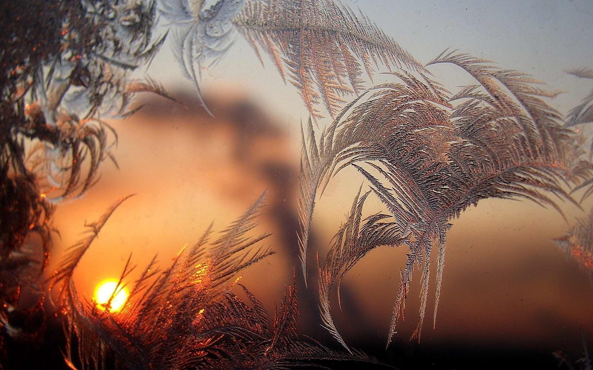 http://www.nastol.com.ua/pic/201312/1920x1200/nastol.com.ua-76648.jpg