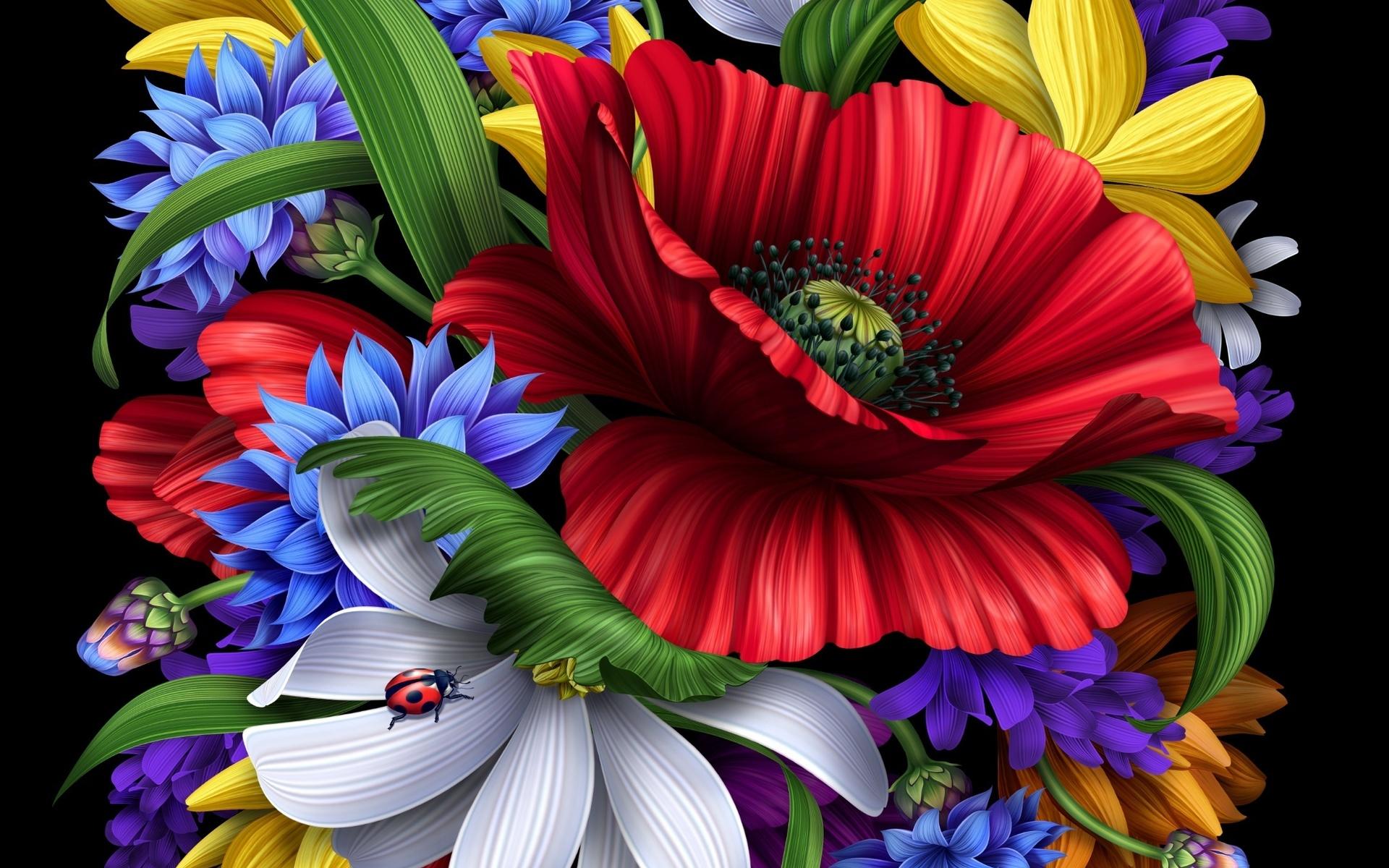 Цветные и рисунки цветов