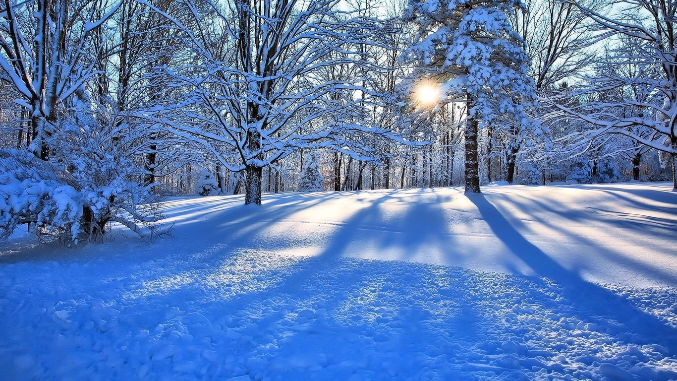 Скачати безплатно фото зими 5 фотография