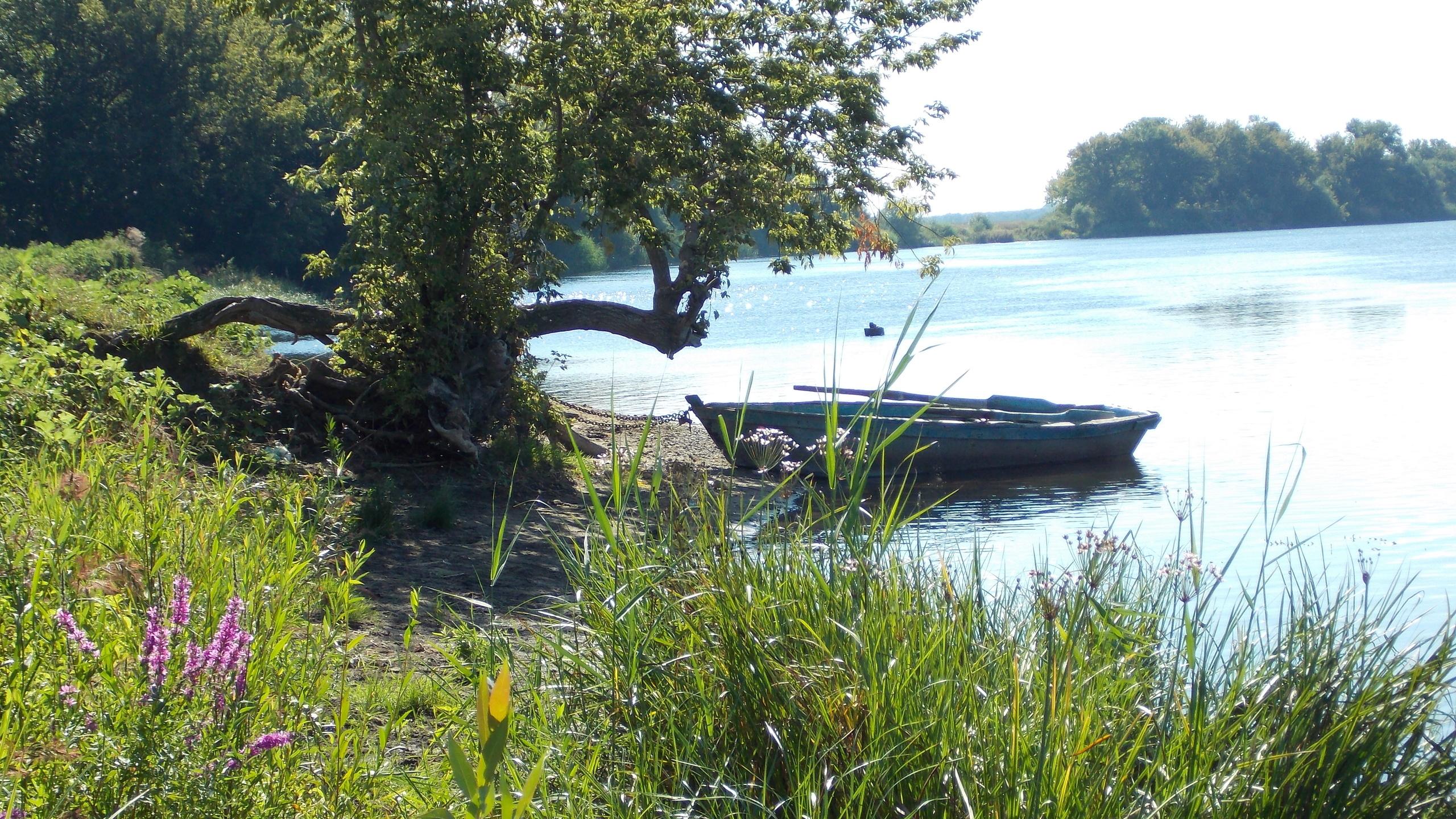 около берега стоит лодка